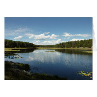 Swan Lake II at Grand Teton National Park Card