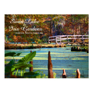 Swan Lake Iris Gardens, Sumter, South Carolina Postcard