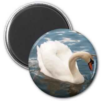 Swan Lake Refrigerator Magnets
