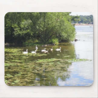 Swan Lake Mouse Pad