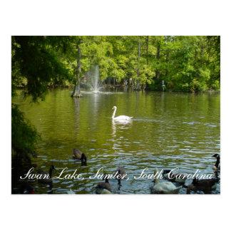 Swan Lake Postcard