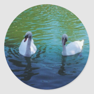 Swan Lake - sticker