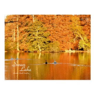 Swan Lake, Sumter SC Postcard