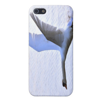 Swan landing on Lake iPhone 5 Case