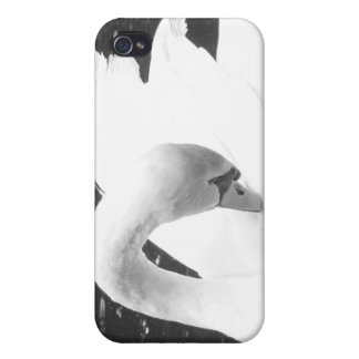 Swan of the Lake--Black and White Cases For iPhone 4