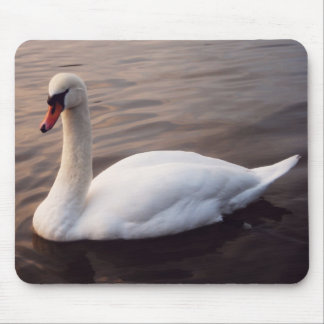 Swan On Lake Mouse Pad