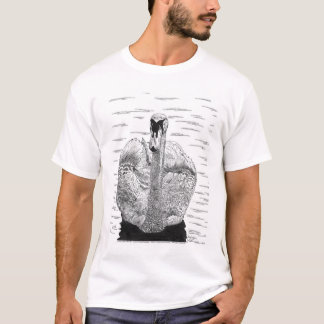 Swan Pen and Ink Drawing T-Shirt