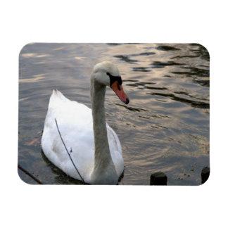 Swan Flexible Magnet