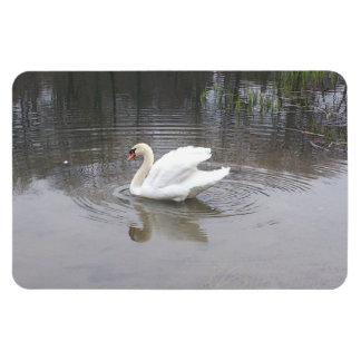 Swan Rectangular Magnets