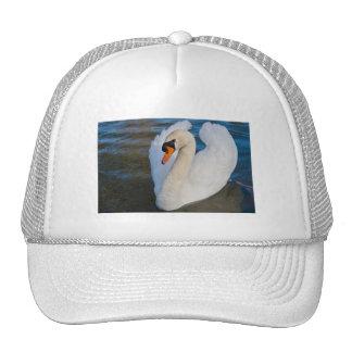 swan profile trucker hat