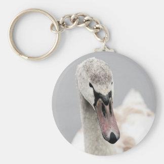 Swan Proud To Be A Swan Pride Water Bird Nature.jp Key Ring