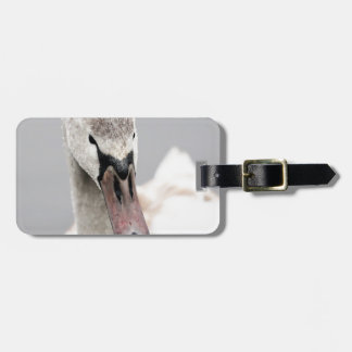 Swan Proud To Be A Swan Pride Water Bird Nature.jp Luggage Tag