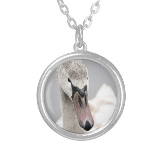Swan Proud To Be A Swan Pride Water Bird Nature.jp Silver Plated Necklace