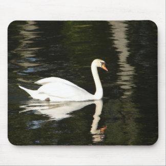 Swan Reflection Mousepad