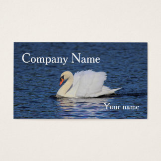 Swan swimming on deep blue lake business card
