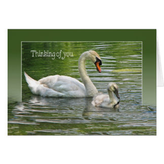 swan with cygnet for thinking of you card