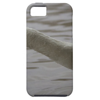 Swan with outstretched neck iPhone 5 cover