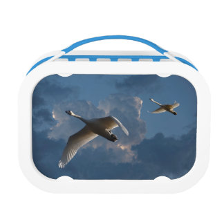 SWANS IN FLIGHT LUNCH BOX