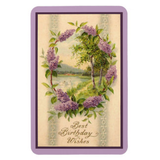 Swans in Lilac Frame Magnet