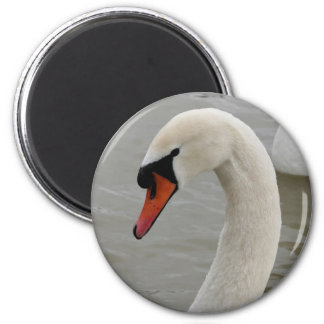 Swans in the lake 6 cm round magnet