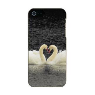 Swans iPhone SE/5/5S Incipit Shine Case
