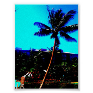 Swaying Palm Tree Poster