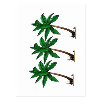 Swaying Palms Postcard