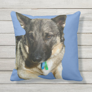 Swedish Vallhund cushion