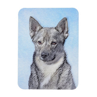 Swedish Vallhund Magnet