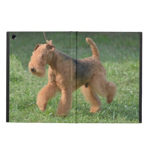Sweet Airdale Terrier Cover For iPad Air