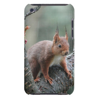 Sweet Animal Case-Mate iPod Touch Case