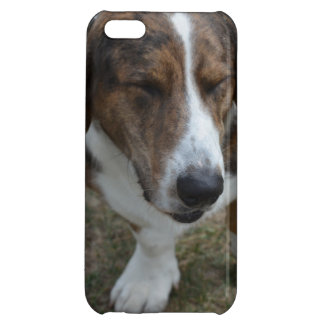 Sweet Basset Hound Case For iPhone 5C