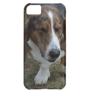 Sweet Basset Hound iPhone 5C Case