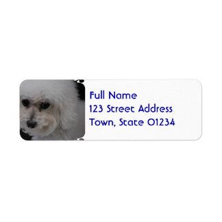 Sweet Bichon Frise Return Address Label