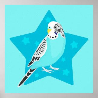 Sweet Bird Parakeet Print