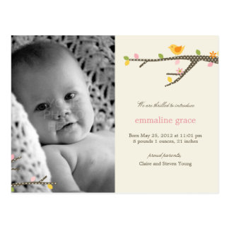 Sweet Birdie Baby Birth Announcement Postcard