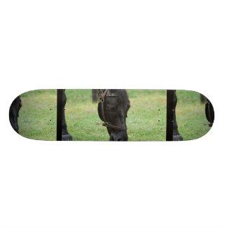 Sweet Black Horse Skateboard