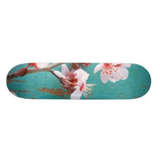 Sweet Board 20.6 Cm Skateboard Deck