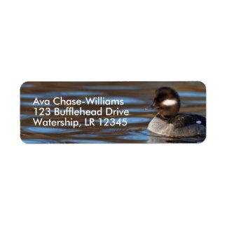 Sweet Bufflehead Duck on Sunlit Waters Return Address Label
