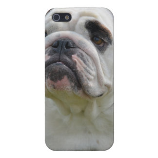 Sweet Bulldog Case For The iPhone 5