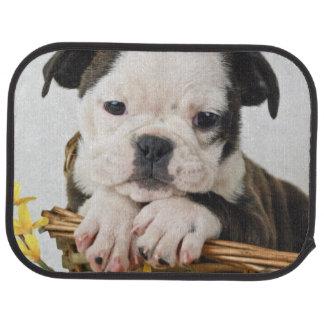 Sweet Bulldog Puppy Floor Mat