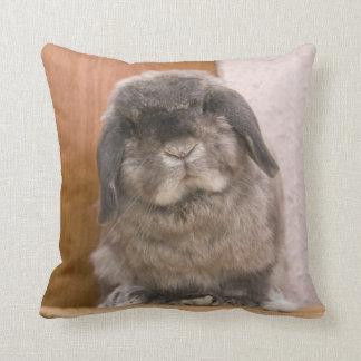 Sweet bunny stare (cushion) cushion