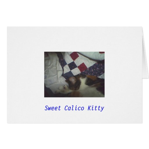 Sweet Calico Kitty Cards