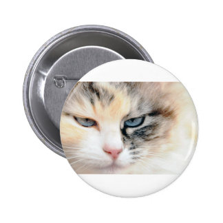 Sweet Cat Buttons