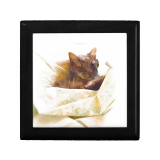 Sweet cat in bed sheets gift box