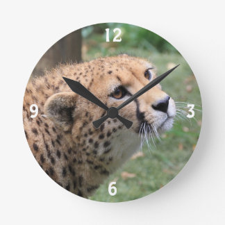 Sweet Cheetah with Appealing Eyes Round Clock