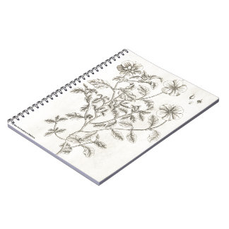 Sweet Cistus Notebook