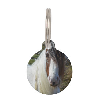 Sweet Connemera Pony Pet ID Tag