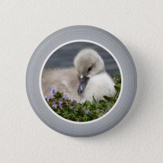 Sweet Cygnet Button