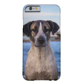 Sweet Dog Barely There iPhone 6 Case